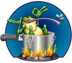 frog in a pot of water